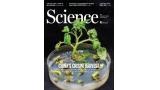 [표지로 읽는 과학] 농작물과 동물 유전자 편집 시대 주도하는 중국