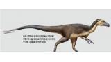 남극 공룡의 깃털은 방한용
