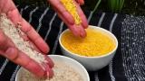 [강석기의 과학카페] GMO 황금쌀, 20년 만에 빛을 볼까