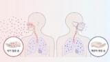 [IBS 코로나19 리포트] 코로나바이러스, 왜 수퍼 전파자가 많을까
