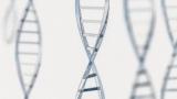 [IBS 코로나19 리포트 시즌2] 코로나19 감염 여부를 신속·정확하게 진단하는 새로운 방법