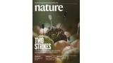 [표지로 읽는 과학]'투 스트라이크' 두 종의 치료제로 간암을 잡다