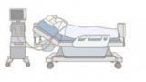 [코로나19 IBS리포트 시즌2] 인체는 코로나19에 어떤 면역반응을 나타내나