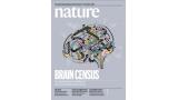 [표지로 읽는 과학]포유류 뇌에서 공통점을 찾다