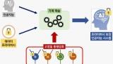 AI에서 데이터 프라이버시 지키는 고정밀 암호화 기술 개발