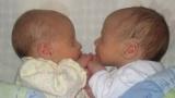 [퀴즈] 쌍둥이는 한 대를 걸러 태어난다?