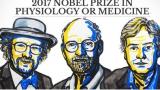 [2017 노벨 생리의학상] 생체 시계의 비밀을 밝힌 과학자들