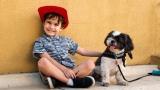 아이와 반려동물 함께 키우는 부모를 위한 조언