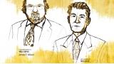 [노벨상 시상식] 암 치료 패러다임 바꾼 면역 항암 치료