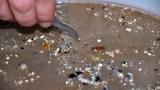 낙동강에서 바다로 유입되는 플라스틱 양 연간 53t…해양유입양 첫 공개