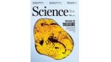 [표지로 읽는 과학]백악기 비밀 품은 호박, 내전의 원인이 되다