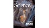 [표지로 읽는 과학] 게놈 프로젝트, 반추동물의 비밀 밝히다