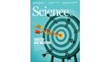 [표지로 읽는 과학] DNA 삽입 효율 한층 높아진 유전자 교정기술