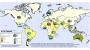 올해 662명 목숨 앗아간 호주 독감, 북반구도 위협