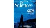 [표지로 읽는 과학] 그린란드 빙하 후퇴, 해수면 상승 가속