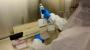 美연구진, 렘데시비르 비슷한 원리의 새 코로나19 치료제 후보물질 발굴