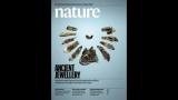 [표지로 읽는 과학] 현생인류-네안데르탈인 '문화 교류' 근거 제시한 장신구