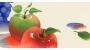 [프리미엄 리포트]과일이 저마다 색으로 물드는 이유