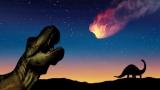 6600만년 전 공룡 멸종시킨 소행성은 태양계 가장 먼 곳에서 날아왔다