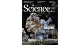 [표지로 읽는 과학] 미토콘드리아는 어떻게 세포의 에너지 공장이 됐을까