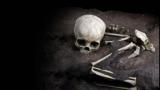 [표지로 읽는 과학] 아프리카서 가장 오랜 현생인류의 무덤