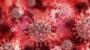 유럽·인도서 보고된 '델타 플러스' 변이…델타에 베타 변이 겹쳐 백신 무력화 가능성